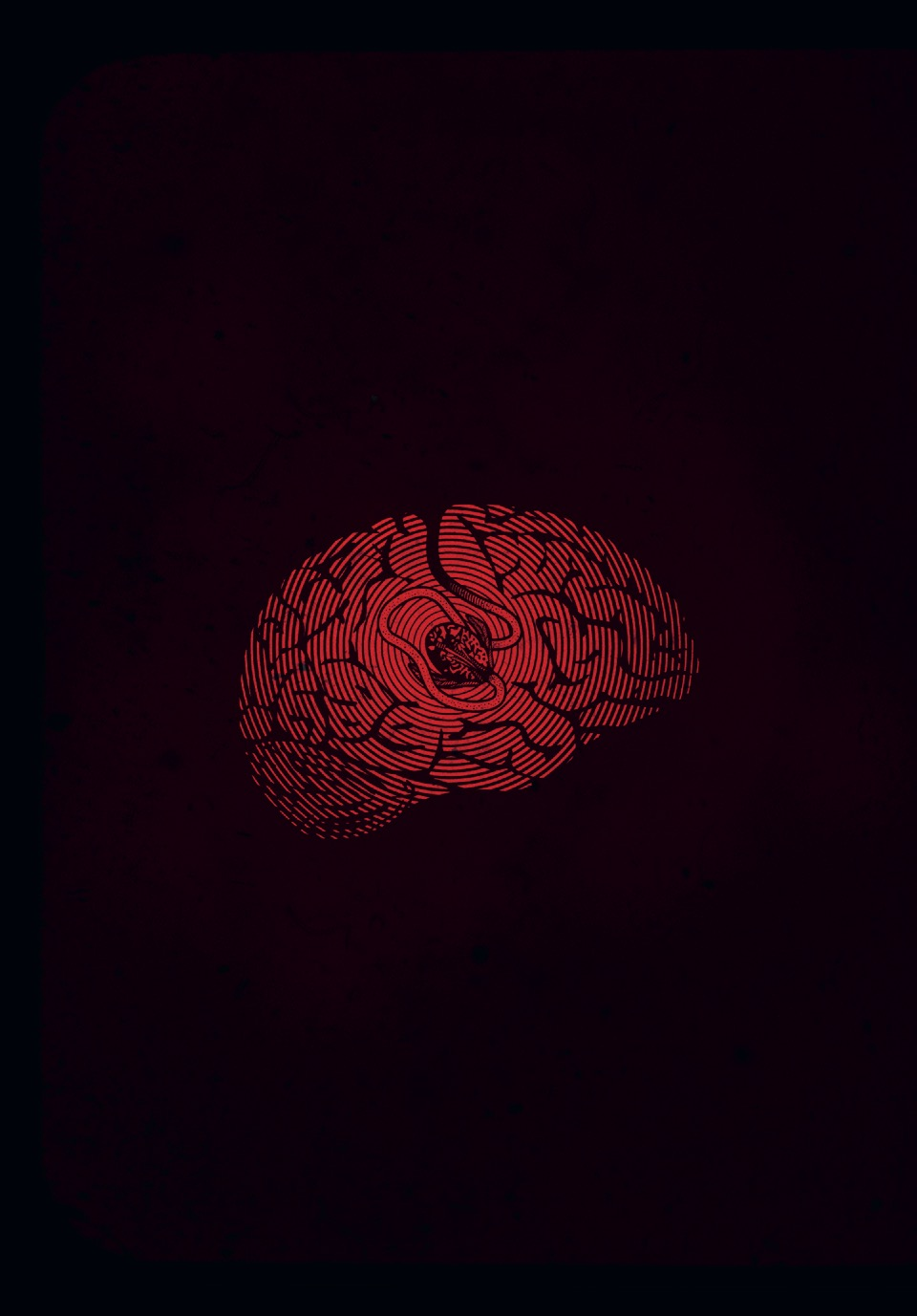 Мозговертка_210-254 110
