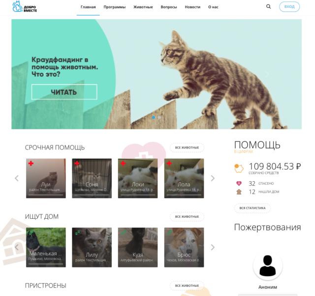 «Добро вместе»: в России запустили первую краудфандинговую платформу для помощи бездомным животным