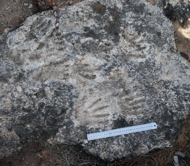 В Тибетском нагорье нашли самые древние отпечатки ладоней — их оставил 12-летний подросток