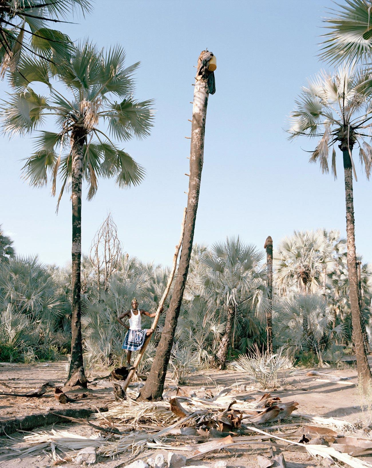 palm-wine-collectors-kyle-weeks-4